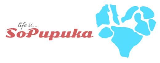 so pupuka blog logo